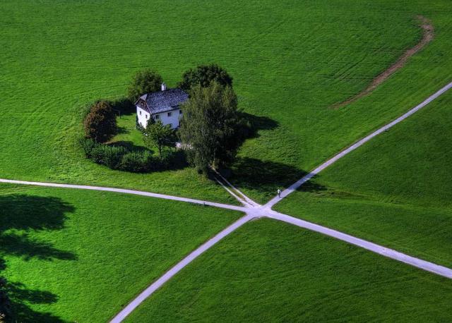 Green crossroad